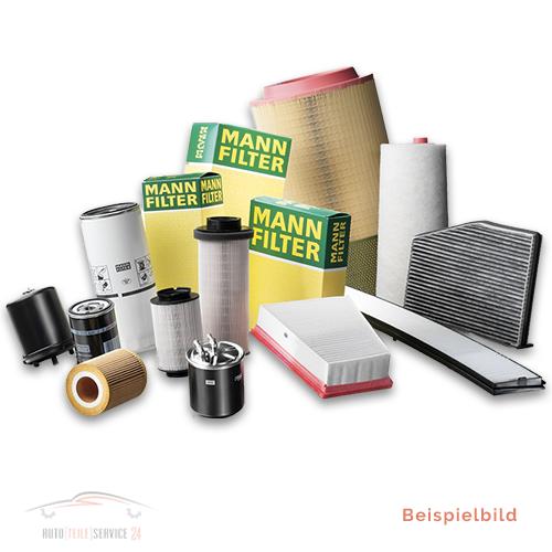 1 MANN-FILTER Luftfilter KUBISTAR KUBISTAR Kasten CLIO  CLIO II Kasten KANGOO